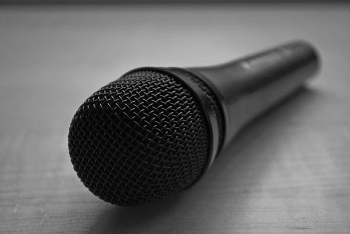 800px-Microphone copy